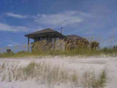 Pensacola-Beach:-Hermosa-St-Homes_08.jpg:  dunes, sea oats, quartz sand, santa rosa island, gulf of mexico